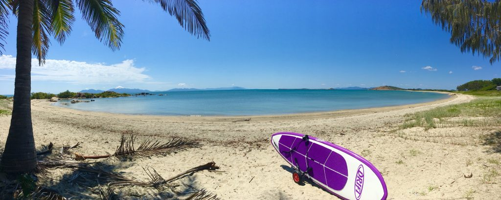 Purple SUP on trolly on beach with palm trees