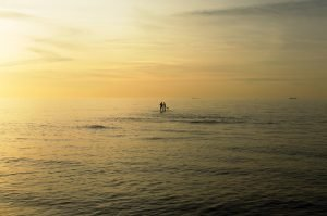Paddleboarders out at sea