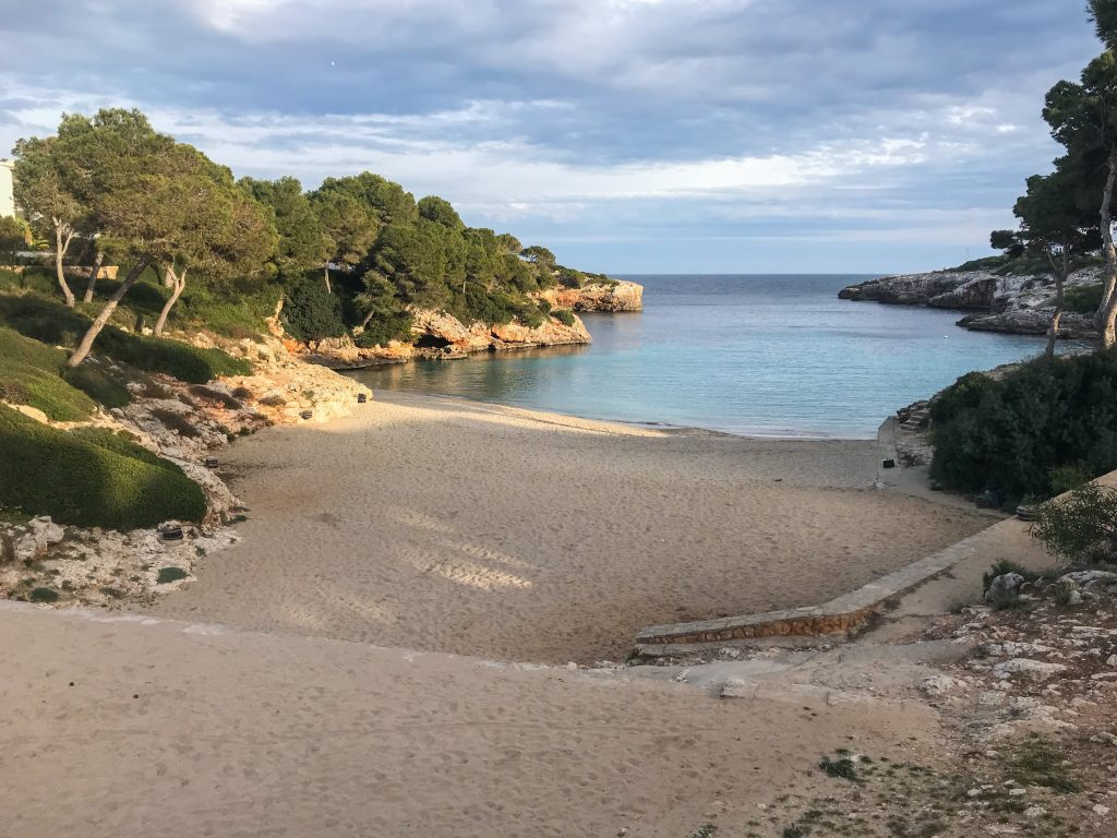Cala Esmeralda Majorca -  a cove with crystal clear water, sandy beach and fringed with pine groves