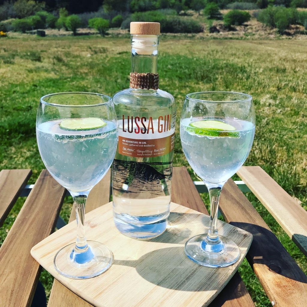 Two glasses and a bottle of gin on a wooden table