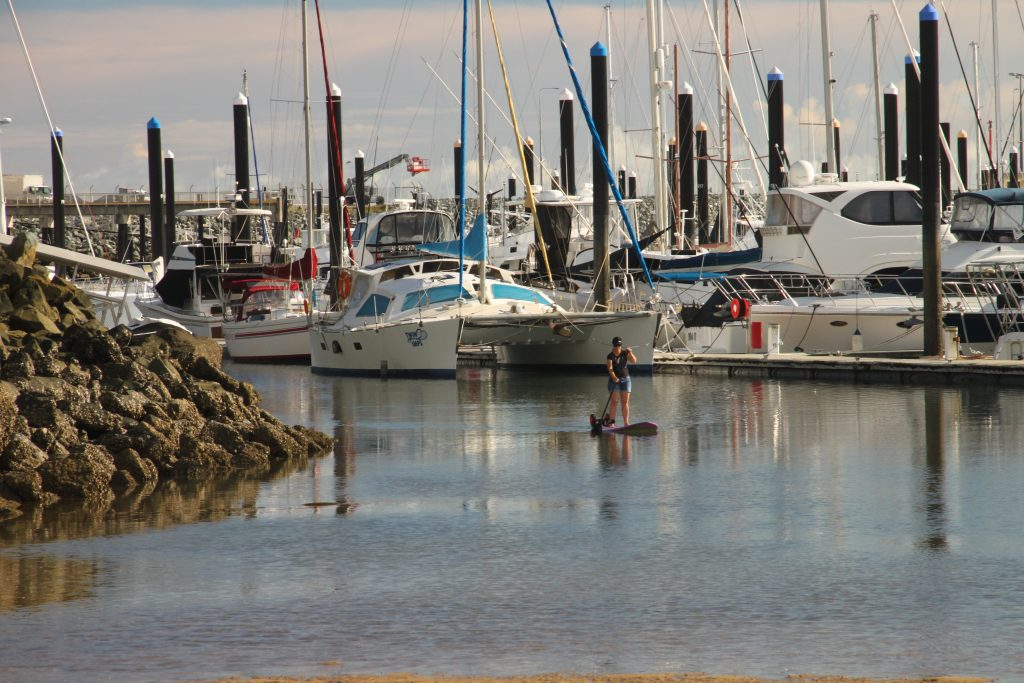 Stand Up Paddleboarding in Mackay Harbour, Australia